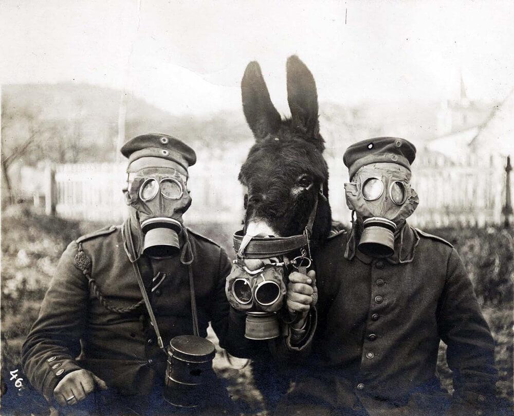 German soldier wearing gas mask